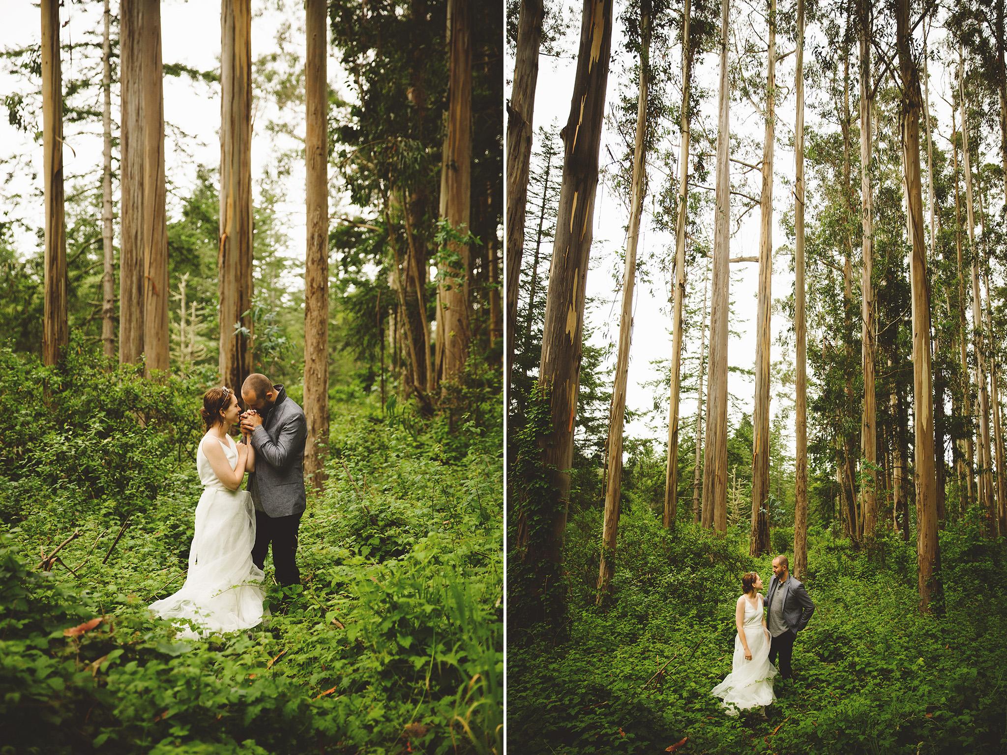 Northern California Forest Wedding