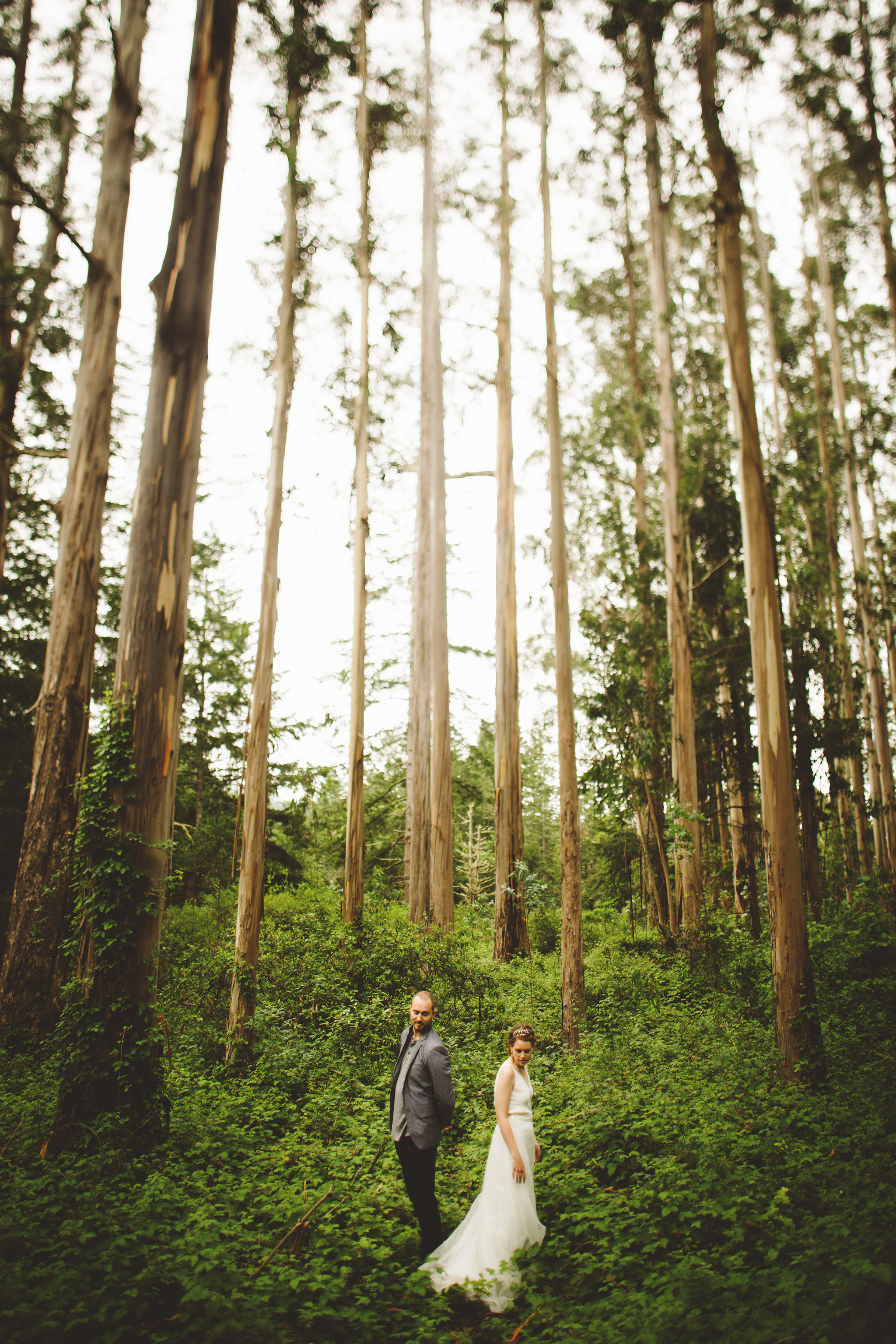 Northern California wedding in the woods