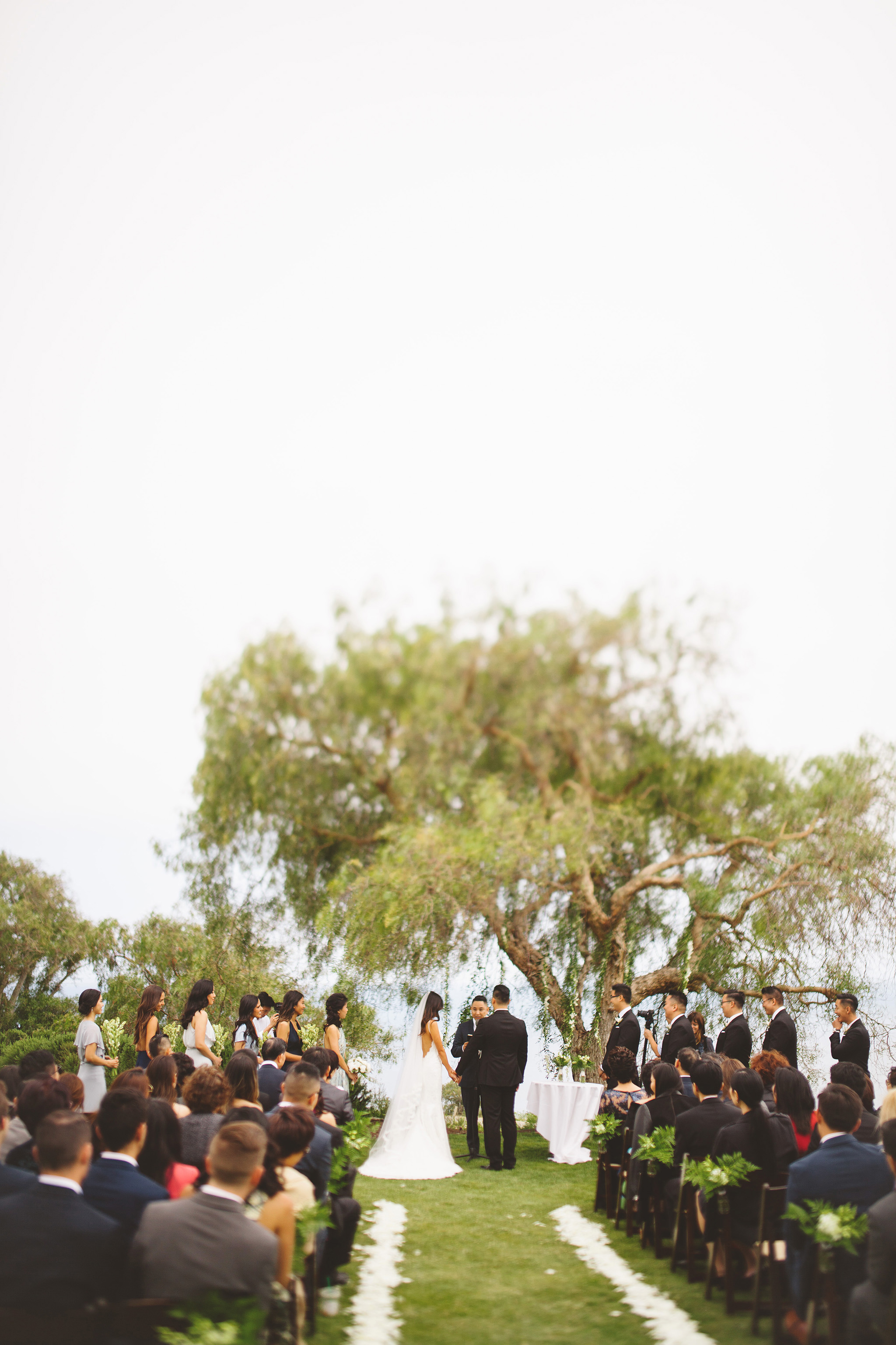 Cataline View Gardens California Wedding by the sea