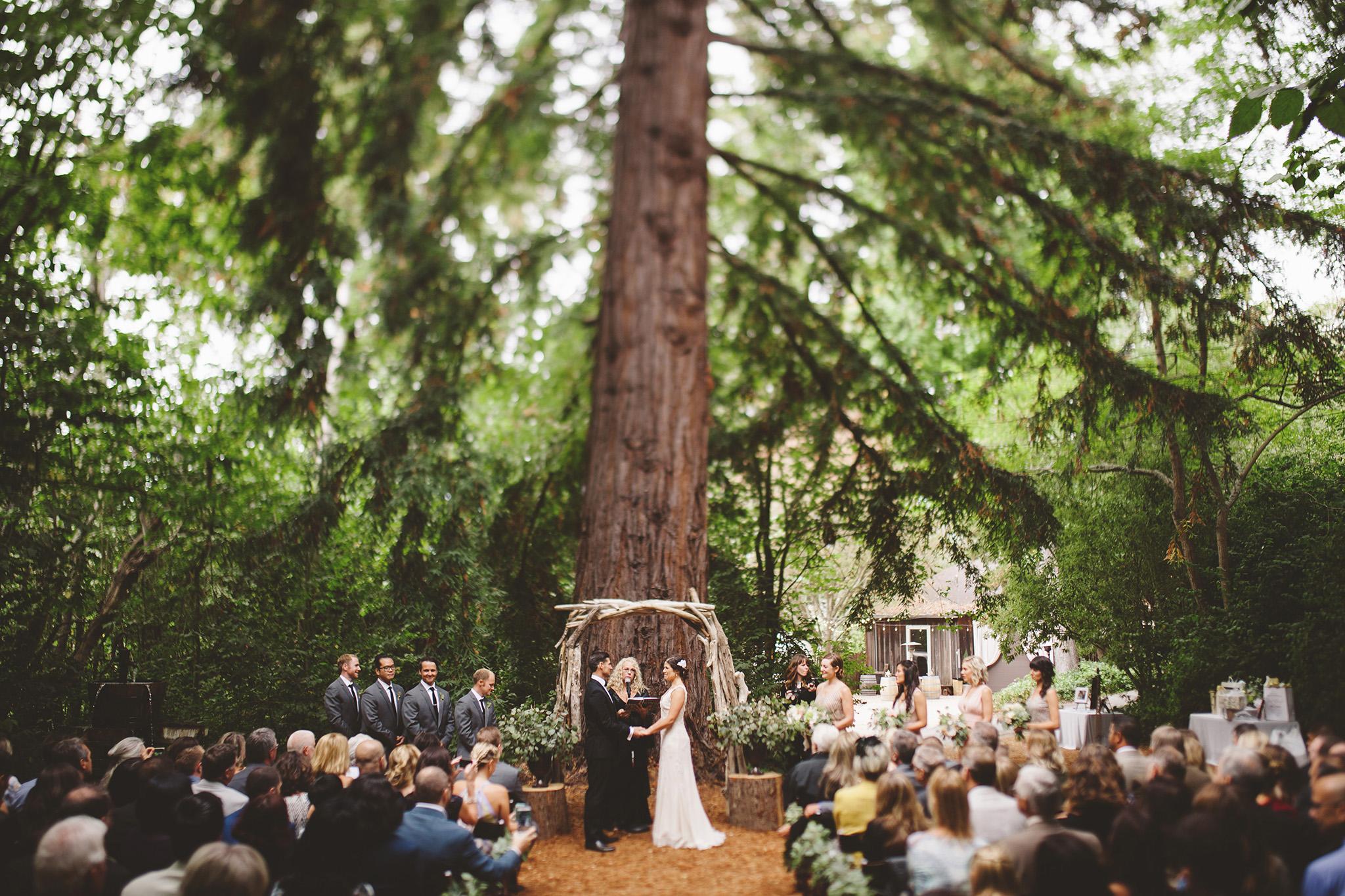 Santa Cruz Redwood wedding at Sand Rock Farm