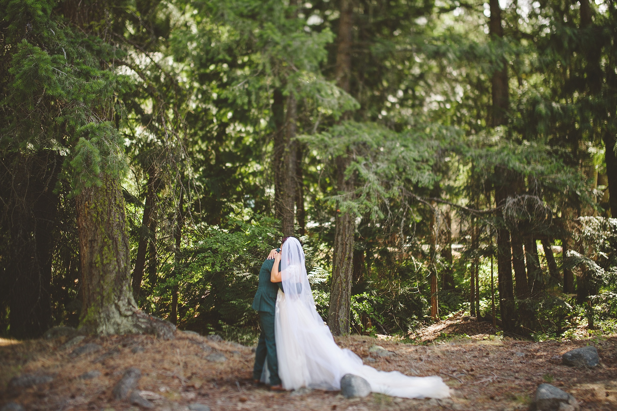 emotional first look in the woods of wa