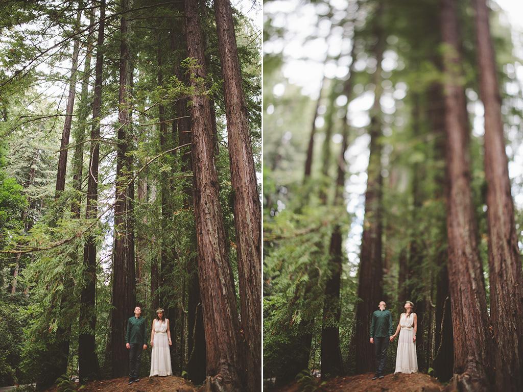 redwood grove wedding photographs