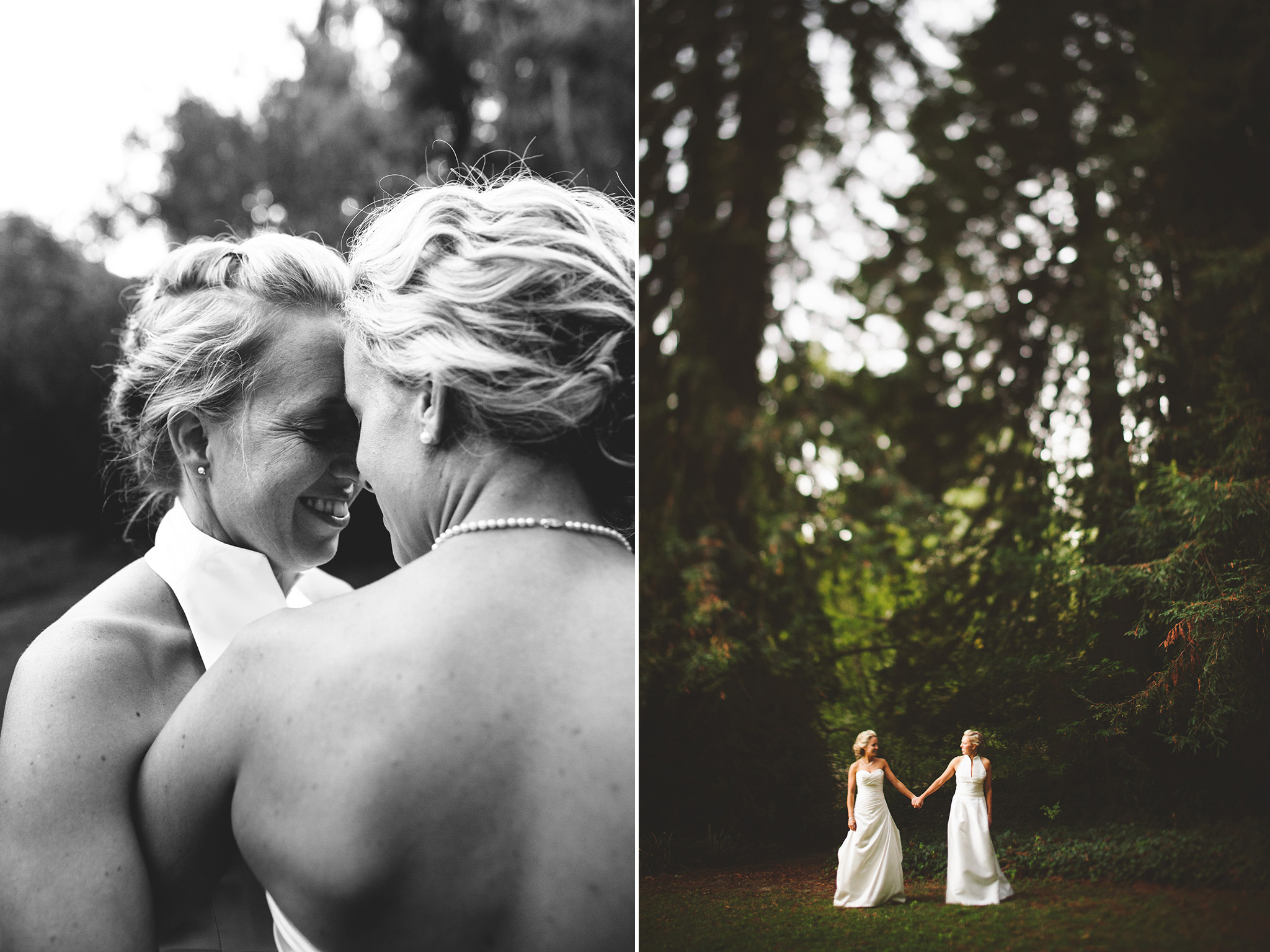 LGBTQ wedding pictures in Guerneville in the redwoods at Dawn Ranch