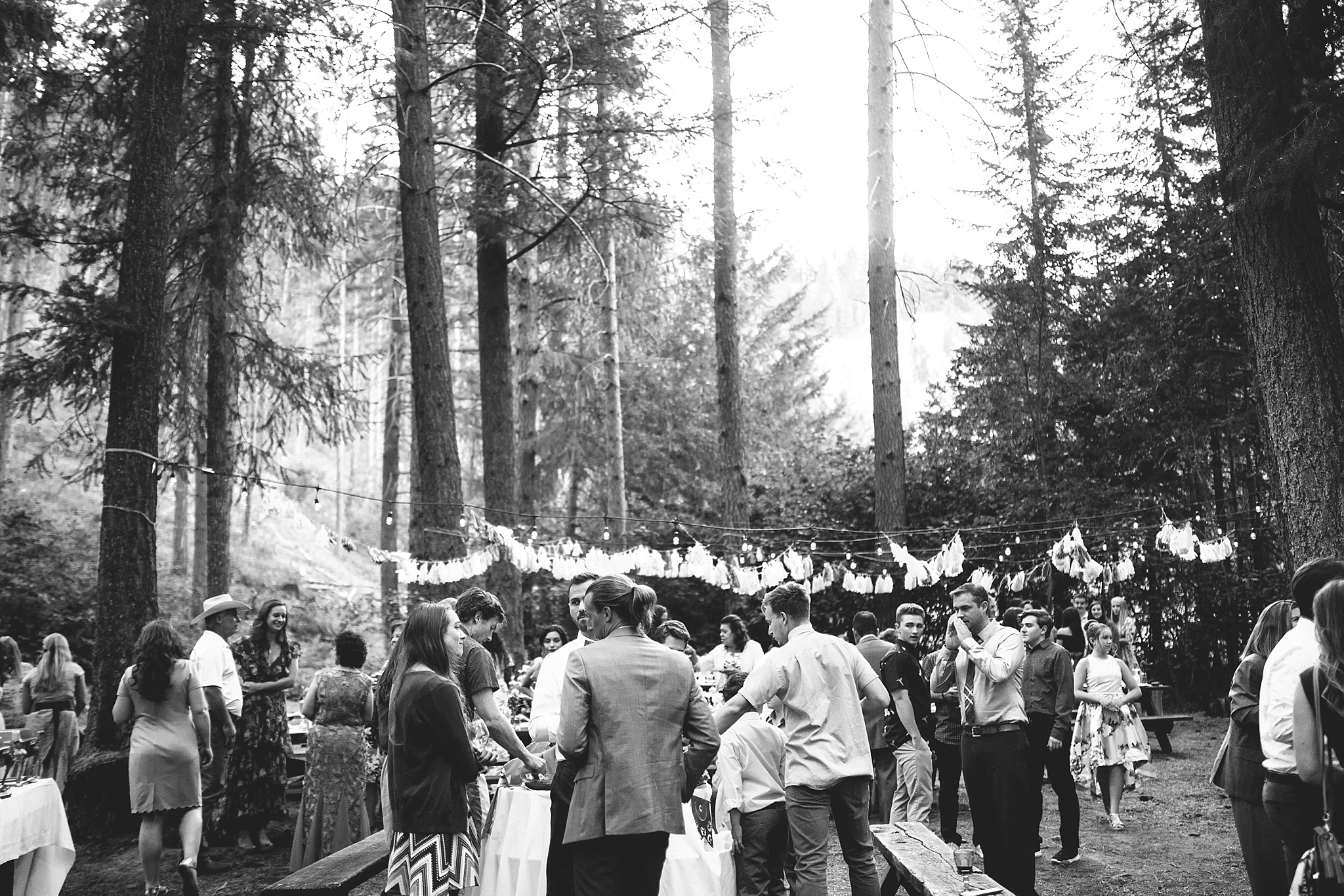wedding reception in the woods