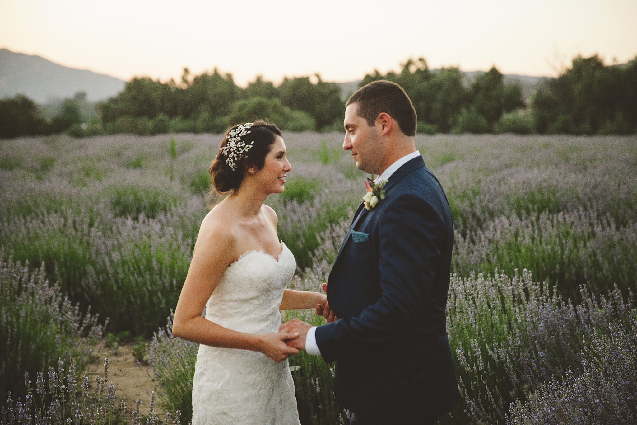 Highland springs wedding portraits in lavender field.
